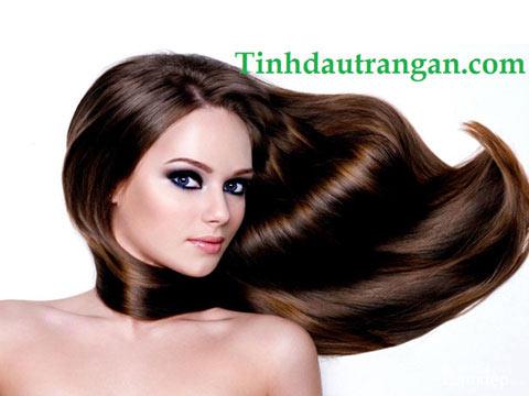 Dầu Dưỡng Tóc - Hair Care