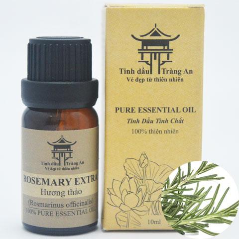 Tinh Dầu Hương Thảo Extra - Rosemary Extra