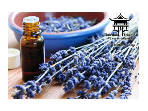 Dầu Dưỡng Da Mặt Oải Hương -  Lavender Face Spa Oil