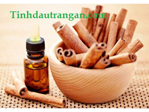 Tinh Dầu Vỏ Quế - Cinnamomum