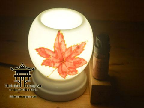 Đèn xông tinh dầu M23