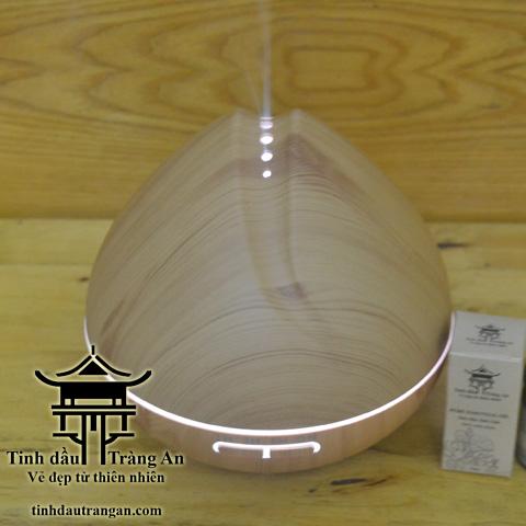 Máy khuếch tán tinh dầu phun sương MDS01 aroma diffuser
