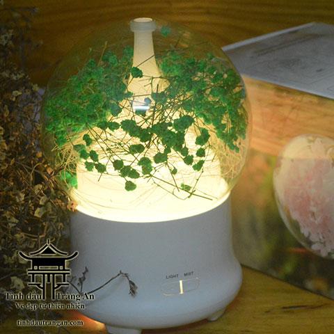 Máy khuếch tán tinh dầu phun sương aroma diffuser F03