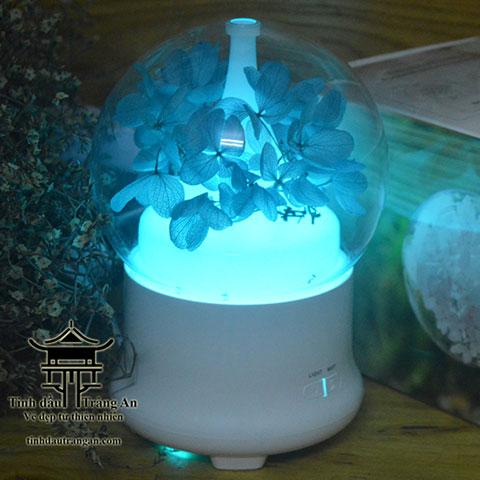 Máy khuếch tán tinh dầu phun sương aroma diffuser F02