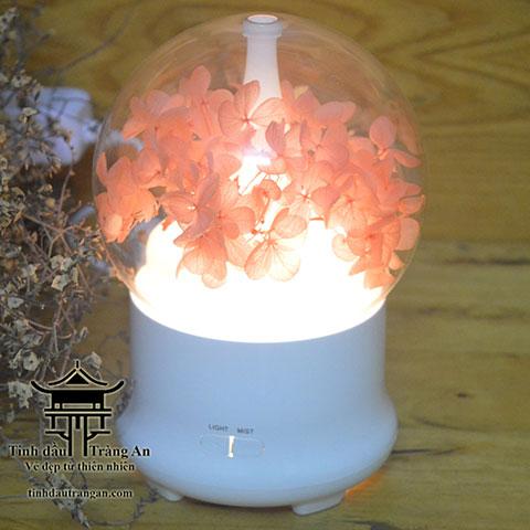 Máy khuếch tán tinh dầu phun sương aroma diffuser F04